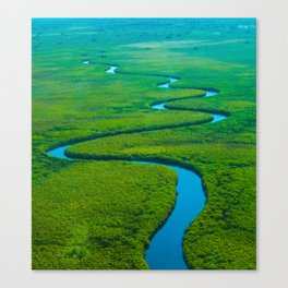 Sidewinder, Okavango River Canvas Print