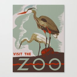 Visit the Zoo - African Birds Canvas Print