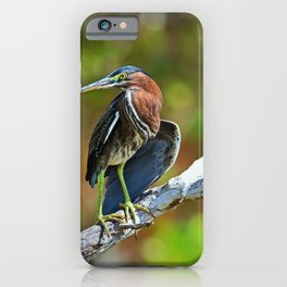 Coastal Living in Ding iPhone Case