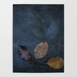 Leaves by Brian Vegas Poster