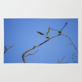 Birds from Pantanal Arara canindé, juntos é bem melhor Rug