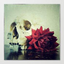 Vanitas Blood Red R Canvas Print