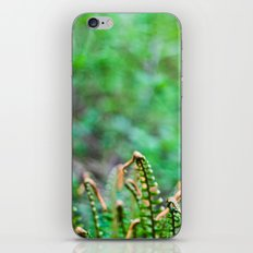 fern iPhone & iPod Skin