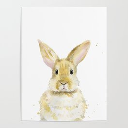 Rabbit. Watercolor Illustration. Poster