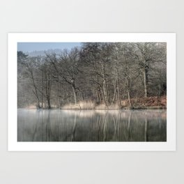 Misty Cannop Ponds Art Print
