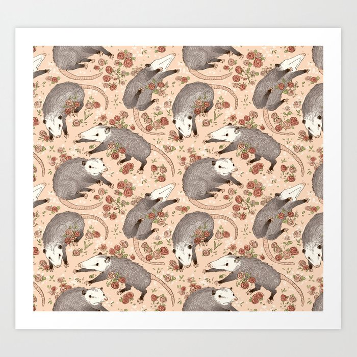 Opossum and Roses Kunstdrucke
