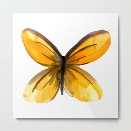 Butterfly no 4 Metal Print