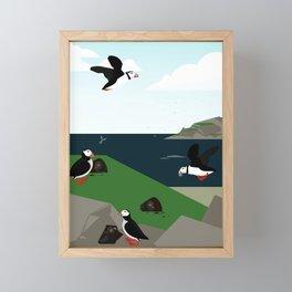 Atlantic puffin Framed Mini Art Print