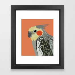 Marcus the cockatiel Framed Art Print
