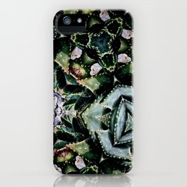 Succulents On Show No 2 iPhone Case