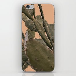 Cactus II iPhone Skin