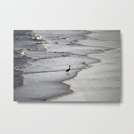 Heron On The Beach Metal Print