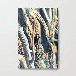 Wooden Viper Metal Print
