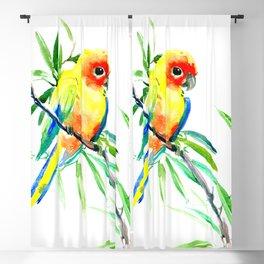 Sun Conure Parakeet, tropical yellow green bird decor Blackout Curtain