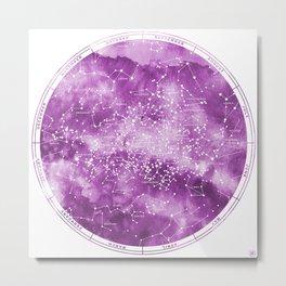 Southern Stars Rose Metal Print