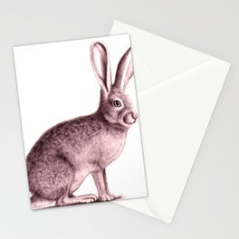 Arizona Jack Rabbit Stationery Cards