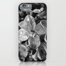 'LILAC' iPhone 6s Slim Case