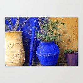 Three Flowerpots Canvas Print
