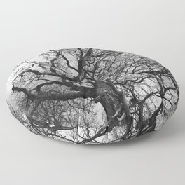 Old oak tree. Moscow district. Floor Pillow