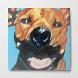 Happy Dog Bruno Metal Print