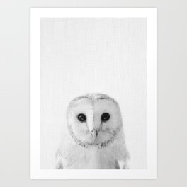 Owl Kunstdrucke