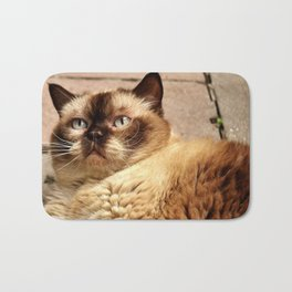 British shorthair cat Bath Mat