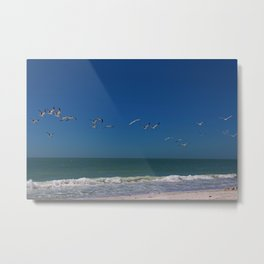 Perspectives in Paradise Metal Print