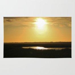 Rays Of Sun Rug
