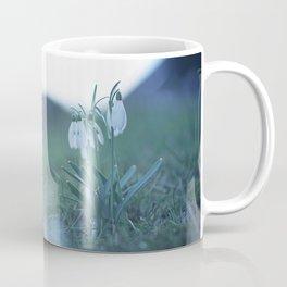 Fragility on a Hill. Coffee Mug