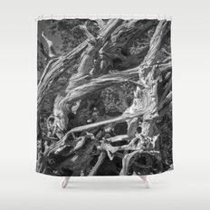 Abstract drift wood Shower Curtain
