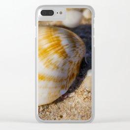 Sea Shell. Hawks Nest. NSW. Australia. Clear iPhone Case