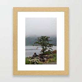 Foggy Mornings in La Push Framed Art Print