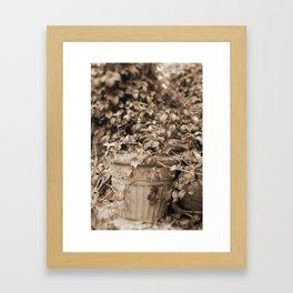 Old Tyme Plant Framed Art Print