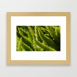 Green world Framed Art Print
