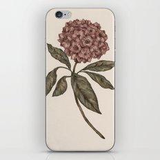 Mountain Laurel iPhone & iPod Skin