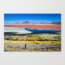 Laguna Colorada Canvas Print