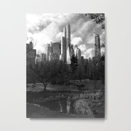Central Park winter morning Metal Print