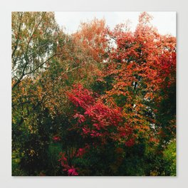 Autumn in the Garden Canvas Print