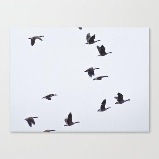 Birds -Scandinavian Minimalist Art Canvas Print