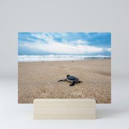 A sea turtle baby aiming at the sea Mini Art Print