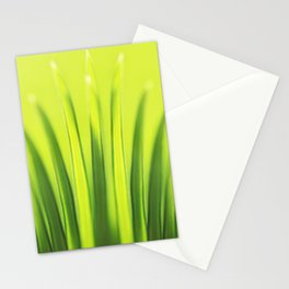 Palm Tree Sunlight Leaf Tropical Summer Green Yellow Hawaii Pattern Stationery Cards