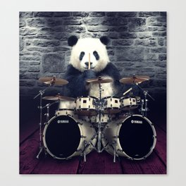 bear drummer Canvas Print
