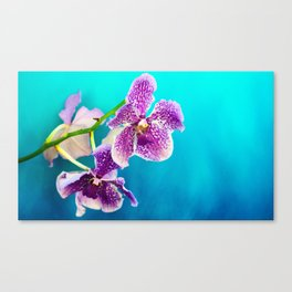 Tropical Blue 3 Canvas Print