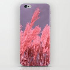 pastel grass iPhone & iPod Skin
