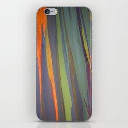 Rainbow Eucalyptus Magic iPhone Skin