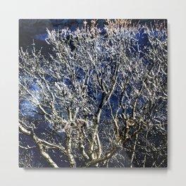 Earth Meets Sky Treescape Metal Print