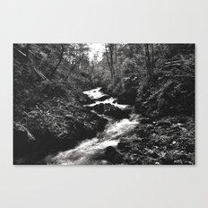 Vintgar Gorge, Bled, Slovenia. Canvas Print