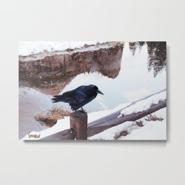 Yosemite Raven Metal Print