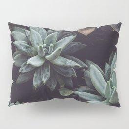 succulent plant Pillow Sham