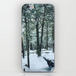 Spring Snow iPhone Skin